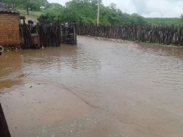 Casas ficaram alagadas após enchente em Dom Inocêncio (Foto: Maria das Mercês Oliveira/Arquivo pessoal)