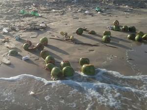 Sujeira pode ser encontrada em diversos pontos das praias do Litoral (Foto: Ellyo Teixeira/G1)