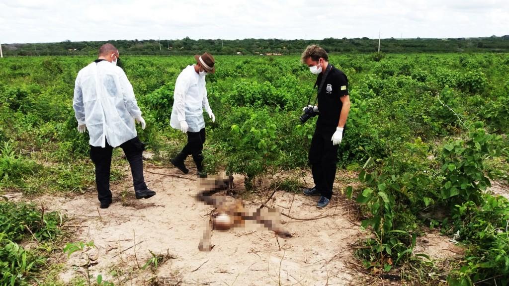 Corpo de homem é encontrado em estado de decomposição na Baixa da Carnaúba em Parnaíba