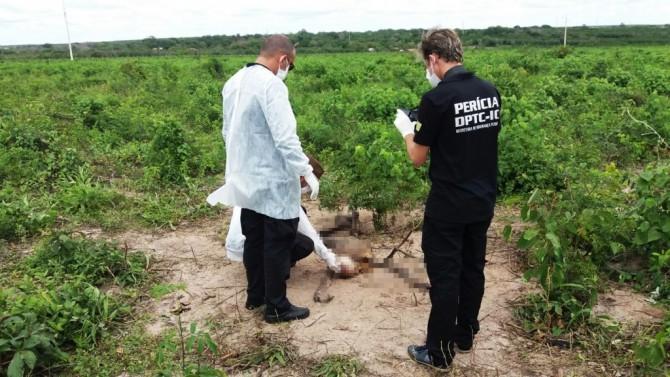 Corpo de homem é encontrado em estado de decomposição na Baixa da Carnaúba, em Parnaíba_01