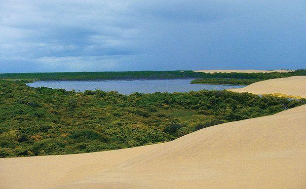 Refúgio Ecológico Ilha do Caju, no Delta do Rio Parnaíba, único das Américas em mar aberto