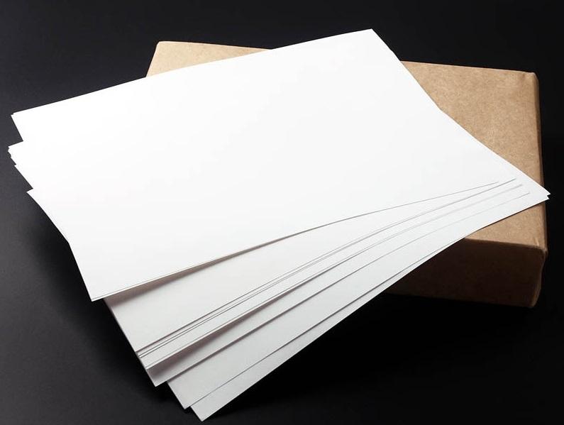 Cidadão volta pra casa sem atendimento por falta de papel no protocolo da prefeitura de Parnaíba