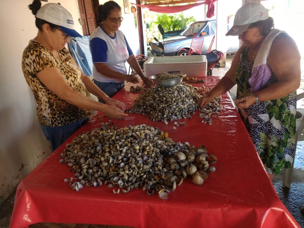 Mulheres sobrevivem da coleta de mariscos na cidade de Luís Correia
