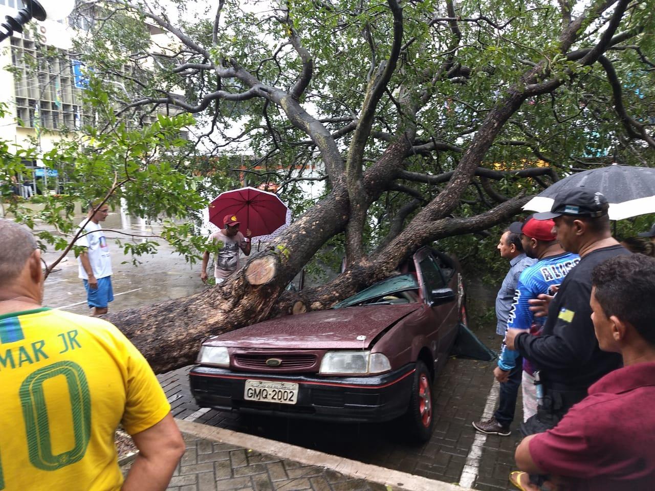 Árvore cai em cima de veículo no Centro e motorista escapa por pouco