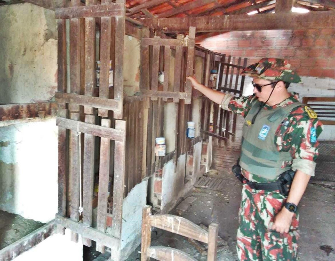 Operação descobre rinha de galo e fabricação ilegal de carvão em Parnaíba