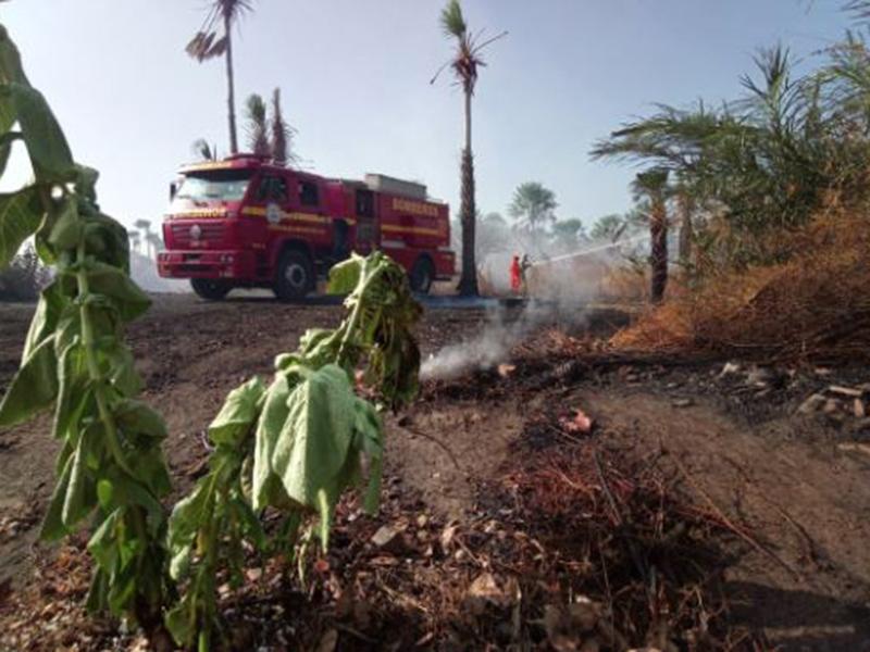 Incêndio no aterro sanitário de Ilha Grande já dura mais de 24 horas