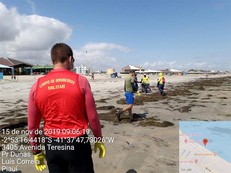 Força-tarefa recolhe 1,5 tonelada de material oleoso das praias piauienses